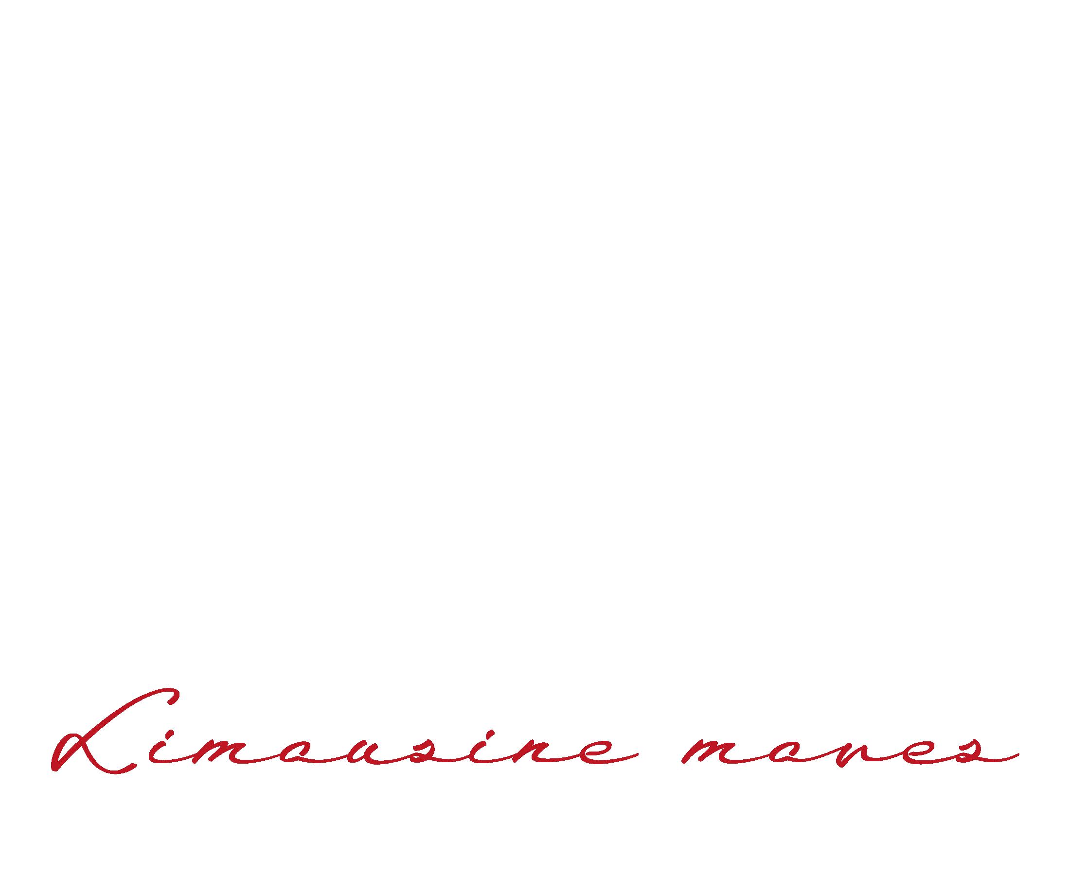 MGA Limousine Moves logo